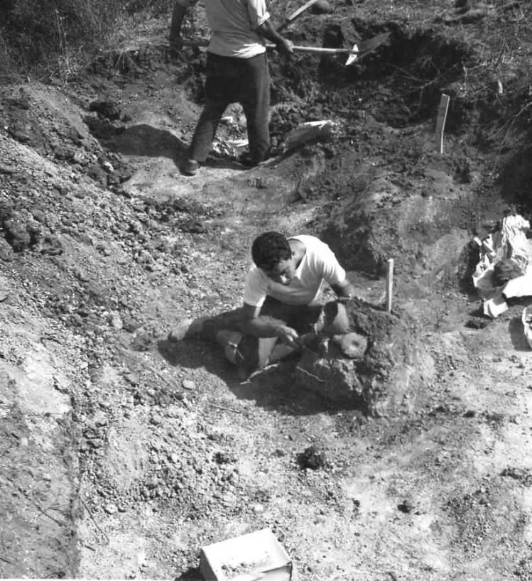 Un Francuccio ventenne a S. Onofrio nello scavo Chiartano